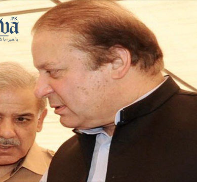 Shehbaz heading home ahead of PML-N's campaign against 'double standards of justice'