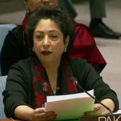 Pakistan calls for resolution of Palestine, Kashmir issues