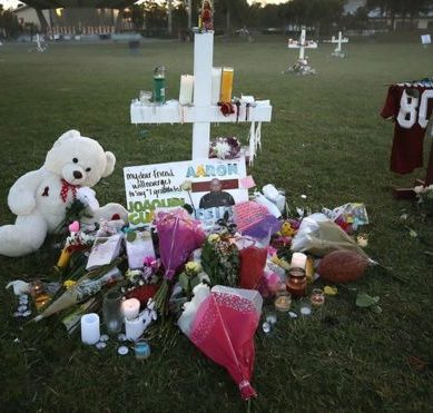 Gun control or a mental health problem? United States is divided after the shooting perpetrated by Nikolas Cruz at Parkland's Stoneman Douglas High School