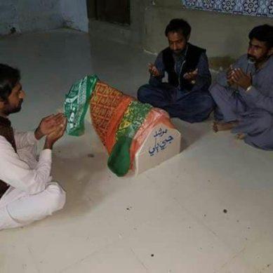 Murshid ji billi: Sindh is now home to 'shrine' of Pir Gaji Shah's cat