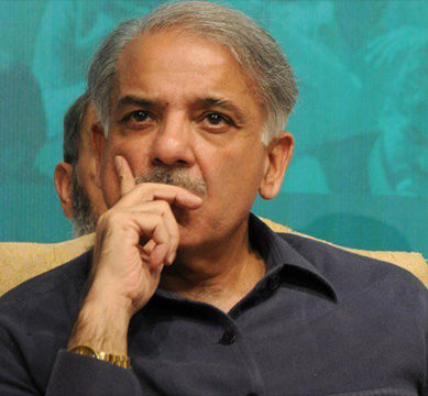 Heir to the throne: Shehbaz 'to be made acting president' of PML-N