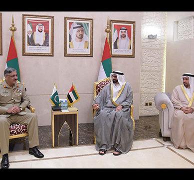 CJCSC Gen Zubair Hayat, UAE defence minister discuss strategic ties