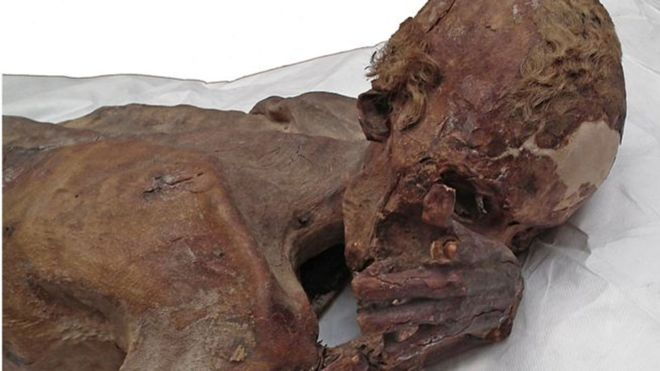 The surprising discovery in two mummies of 5,000 years ago that revolutionizes what we know about Ancient Egypt