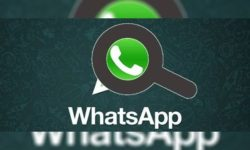 whatsappsearch