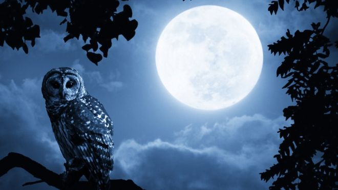 Can the full moon affect the quality of sleep?