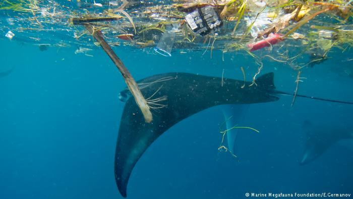 The EU presented a list of plastic products that it wants to ban