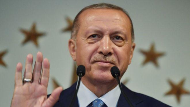 Erdogan wins presidential elections in Turkey