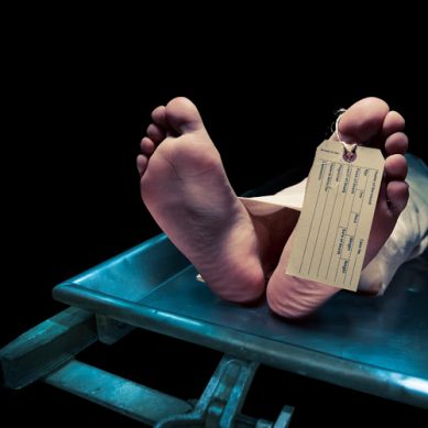 'Dead' South African woman found alive in mortuary fridge