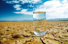 Beware! Dehydration can hamper certain cognitive activities