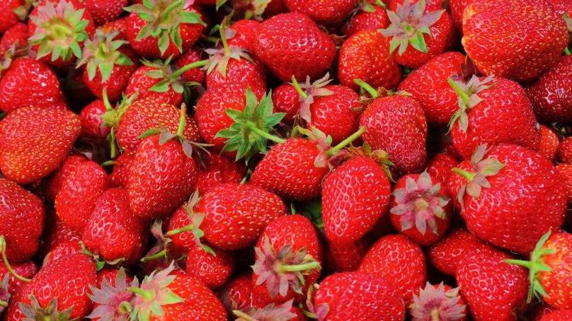 Warning: Strawberries embedded with needles, slit before you eat!