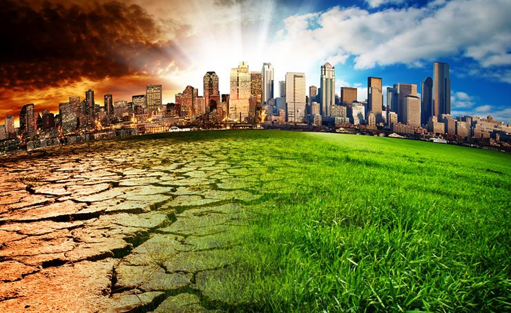 Climate change: 5 things you can do to avoid global warming