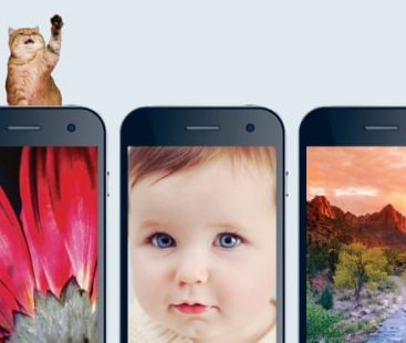 Selfie, baby or a picture of your cat: what your phone background reveals about you