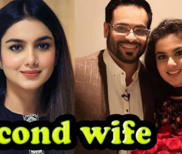 Love is in the air: Aamir Liaquat and his second wife share moments of love on Twitter