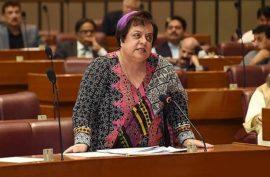 Lesson for Pakistani leaders who appeased US: Shireen Mazari