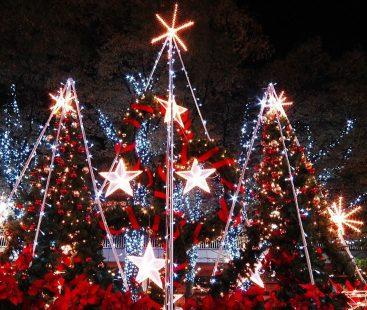 Celebrating Christmas in Pakistan