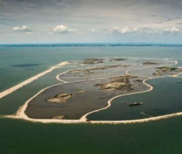 Dutch build artificial island, rewilding operations continue