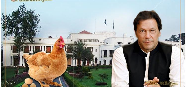 Imran Khan's 'chicken formula' kicks off poultry campaign