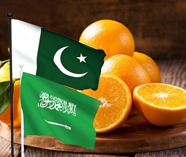 Jeddah's 'Citrus Campaign' kicks off from 16th January