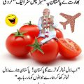 india tomatoes modi