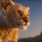 Disney drops new trailer of 'Lion King' remake
