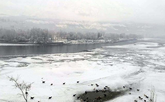 Severe cold wave grips country; 75 killed