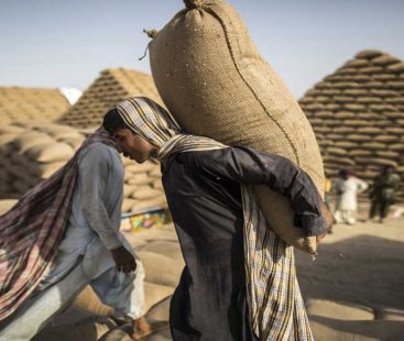 ECC waives Rs7.7b import tax on wheat