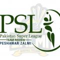 Peshawar Zalmi – Team Review