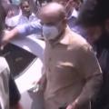 Lahore High Court grants Shehbaz Sharif pre-arrest bail
