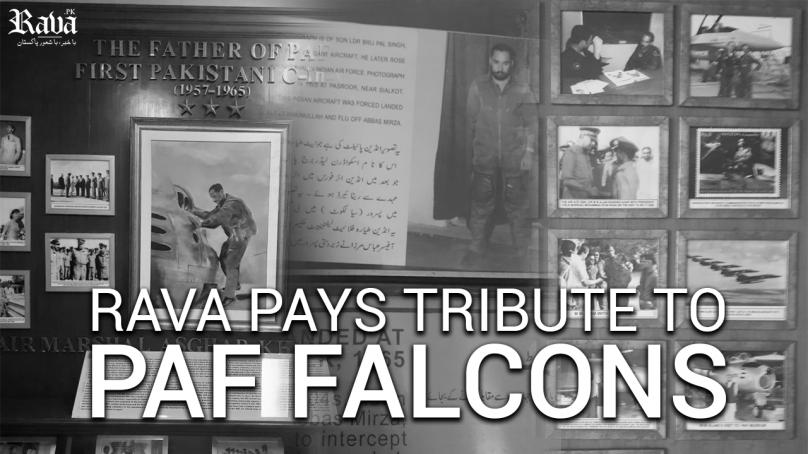 falcons 808x454