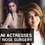 Secret Out: Pakistani Actresses Who Got Nose Surgery