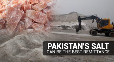 Pakistan's Salt Can Be the Best Remittance