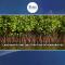 Land mafia and obliteration of mangroves