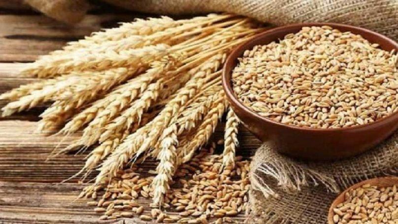 Pakistan plans to import 500000 tonnes of wheat to meet demand 1280x720 808x454
